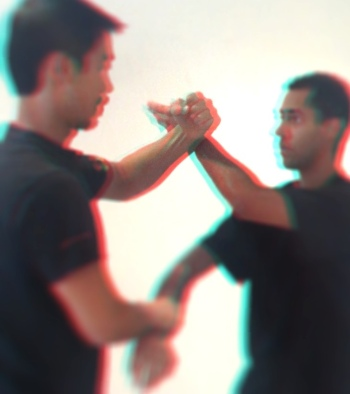 Learn WingChun in 3D
