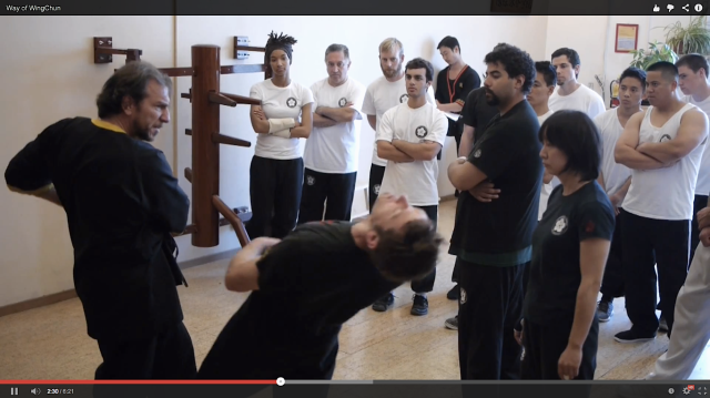 Way of WingChun Video