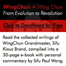 WingChun E-Book
